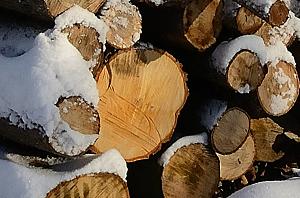 Holzvermarktung